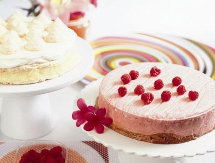 עוגת שוקולד פטל קפואה (צילום: ידיעות אחרונות)