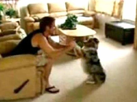 כלב שיודע להביא בירה (חדשות 2) (צילום: חדשות 2)