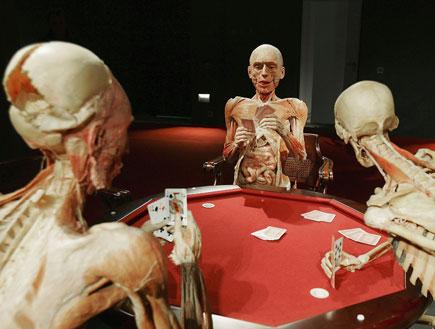 תערוכת עולמות גוף (צילום: Andreas Rentz, GettyImages IL)