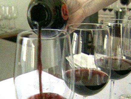 המלצות לרכישת יין (תמונת AVI: חדשות)