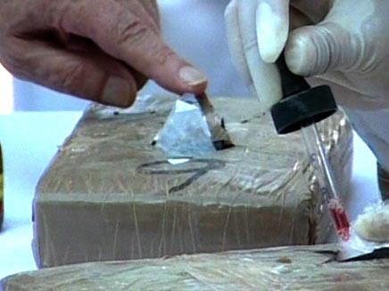 לכידה של סם מסוג קוקאין, ארכיון (צילום: חדשות 2)