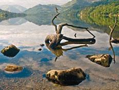 אגם אולסוואטר באיזור האגמים בצפון אנגליה (צילום: גלובס)
