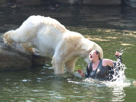 אישה שנפלה לבריכת דובים (צילום: sky news)