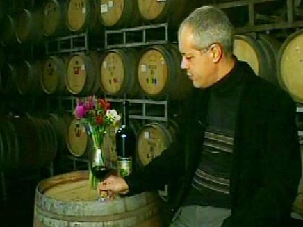 שותה יין במרתף יינות (חדשות 2) (צילום: חדשות 2)