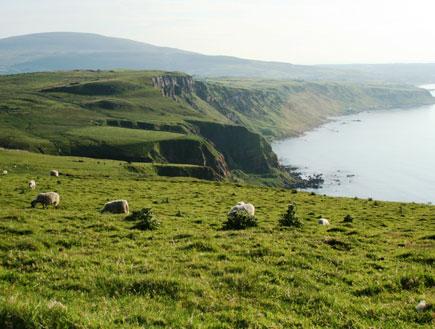 צפון אירלנד (צילום: סתיו שפיר)