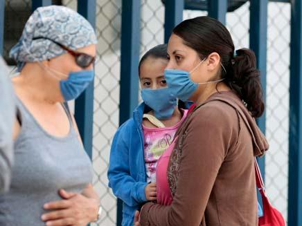שפעת החזירים (צילום: רויטרס)