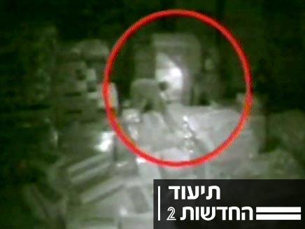 גנבי בשר שנקלטו במצלמת אבטחה (צילום: חדשות 2)