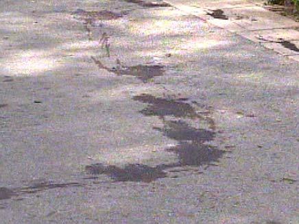דקירת נער בפארק הזיכרון בראשון לציון (צילום: חדשות 2)