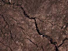 האדמה שוב תרעד? (צילום: SUTTERSTOCK)