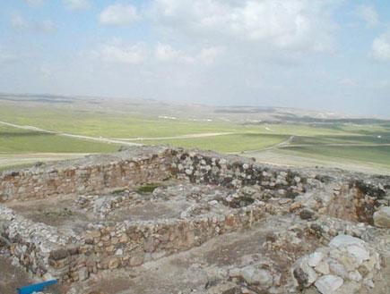 טיולים בדרום: תל ערד (צילום: איל שפירא)