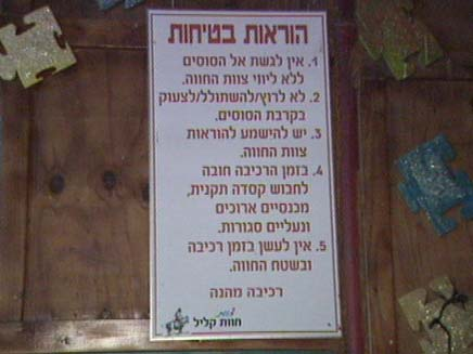 הוראות בטיחות בכניסה לאורווה (צילום: חדשות 2)