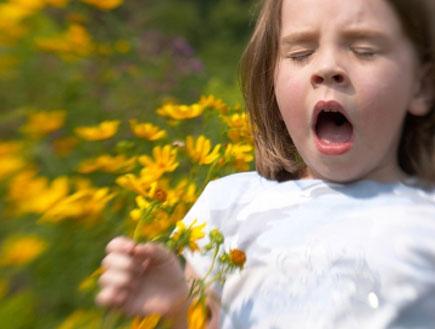 ילדה מתעטשת (צילום: BigPappa, Istock)
