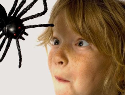 ילד ועכביש (צילום: iStock)