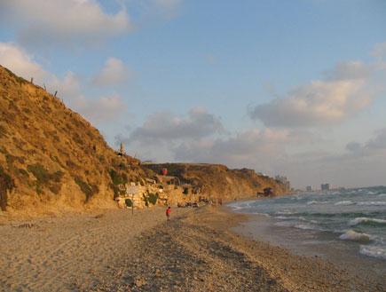 חוף סידני עלי (צילום: ליאור אבולעפיה)