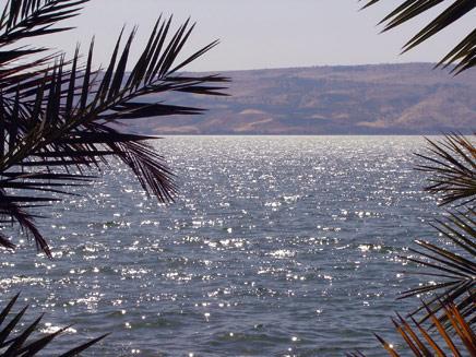 סוף לבצורת. אגם הכנרת (צילום: דניאל נחמיה, חדשות 2)