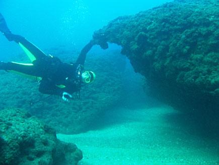 צוללן מתחת למים (צילום: סקובה דייב ישראל)