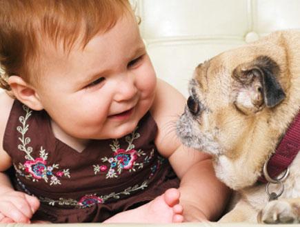 תינוקת וכלב (צילום: istockphoto)