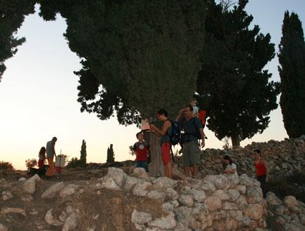טיול אל גבעת הברושים (צילום: החברה להגנת הטבע)