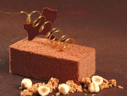 """רביבה- עוגת קרנץ שוקולד (צילום: """"השוקולד שלי"""" בעריכת אלינוער רבין, עמותת """"ילדים שלנו"""")"""