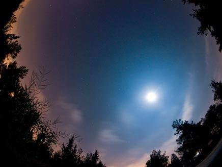 פרסאיד בשמי ישראל (צילום: ירון עיני WWW.photography.co.il)