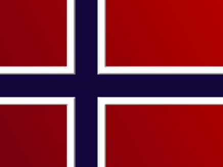 דגל נורווגיה (צילום: חדשות 2)