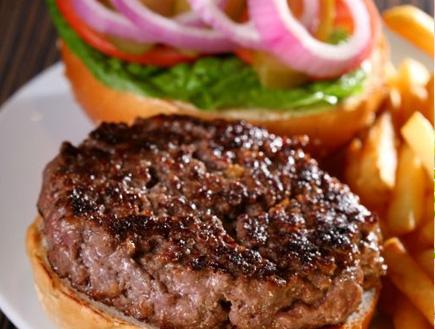 המבורגר של הומבורגר (יח``צ:  יחסי ציבור )