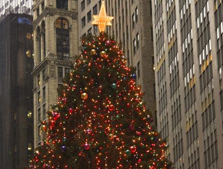 חג מולד בניו יורק (צילום: Lya_Cattel, Istock)
