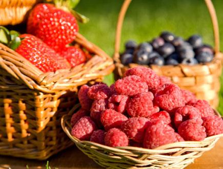 סלסילות של פירות (צילום: istockphoto)