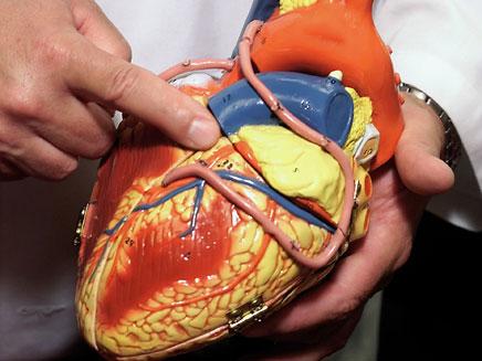 טיפול חדשי למחלות לב. ארכיון (צילום: AP)