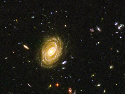 המפץ הגדול (צילום: רויטרס)