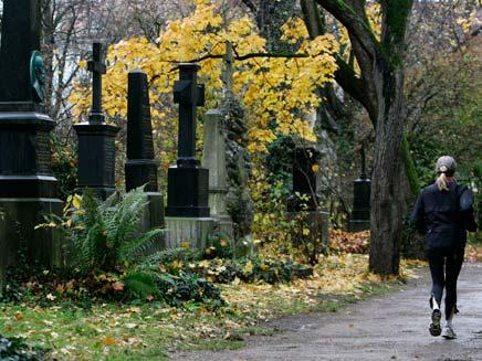 נקברו בבית קברות יהודי ברומניה, ארכיון (צילום: AP)