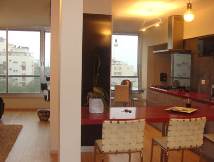 מבט על המטבח אחרי שיפוץ -גיא פלד 1 (צילום: גיא פלד)