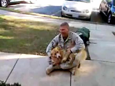 כלב מתרגש כשבעליו שב הביתה מאפגניסטן (צילום: חדשות 2)