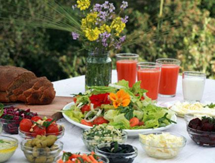 ארוחה ירוקה (צילום: אתר מפה)