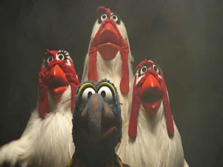 חבובות (צילום: חדשות 2)