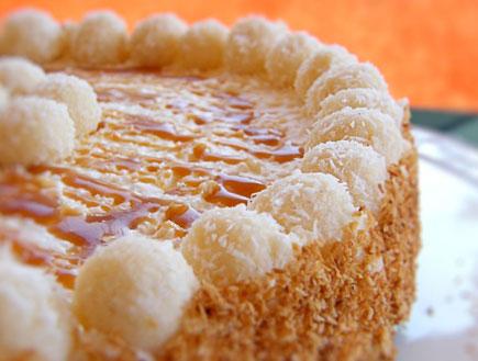 עוגת מוס קוקוס פינקולדה - מוכנה (צילום: דליה מאיר, קסמים מתוקים)