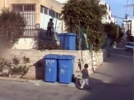 פחי מחזור (צילום: חדשות 2)