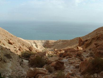 טיול בבקעת ים המלח: הנוף מנחל סלבדורה (צילום: ערן גל-אור)