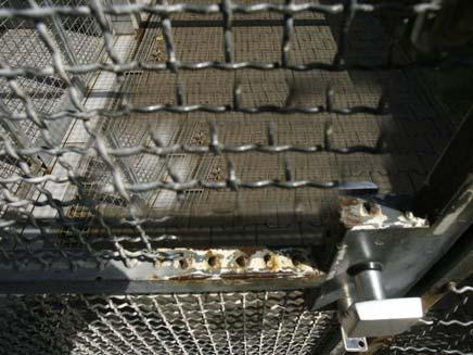 כלוב ריק (צילום: רויטרס)