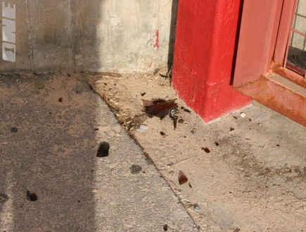 שרידי בקבוקי התבערה במתחם חודורוב (רועי גלדסטון) (צילום: מערכת ONE)