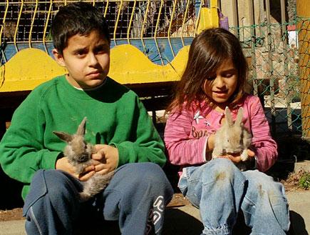 טיול עם ילדים: פינת חי (צילום: שירלי אהרון)