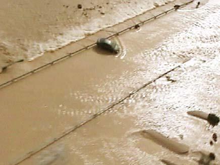 שטפונות (צילום: חדשות 2)