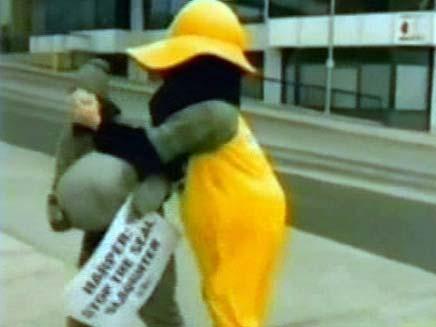 """פעיל ארגון בע""""ח מקבל עוגה בפרצוף (צילום: חדשות 2)"""