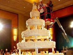 עוגת החתונה הגדולה בעולם (צילום: האתר הרשמי)