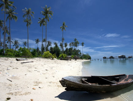 חוף ים 2 - בורנאו (צילום: istockphoto)