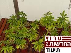 מעבדת הסמים שנמצאה בדירתה של עורכת הדין