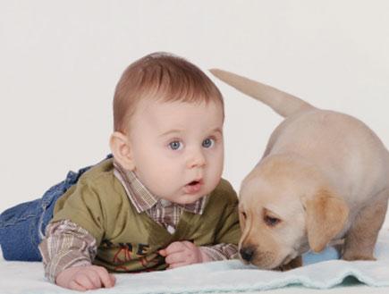 גור כלב קטן עם תינוק ששוכב על הרצפה (צילום: Waldemar Dabrowski, Istock)