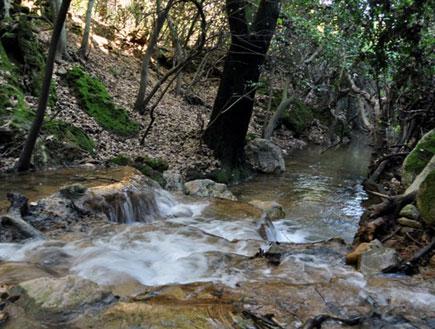 טיול בגליל העליון: בריכות נחל מירון (צילום: ערן גל-אור, מסלולים> להתאהב בארץ מחדש)