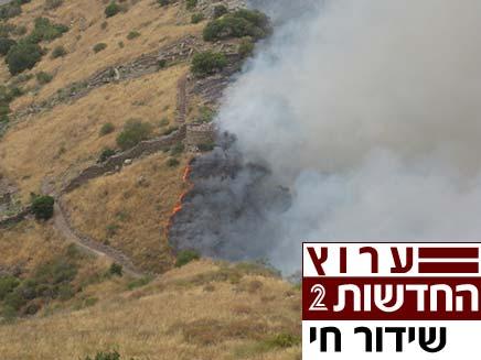 שריפה בגמלא (צילום: חדשות 2)