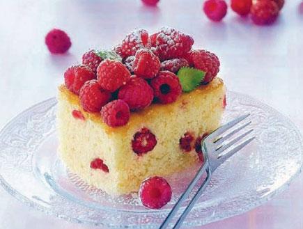 עוגה עם פירות אדומים של בני סיידא (צילום: פיליפ מטראי, עוגות בחושות, הוצאת מודן)